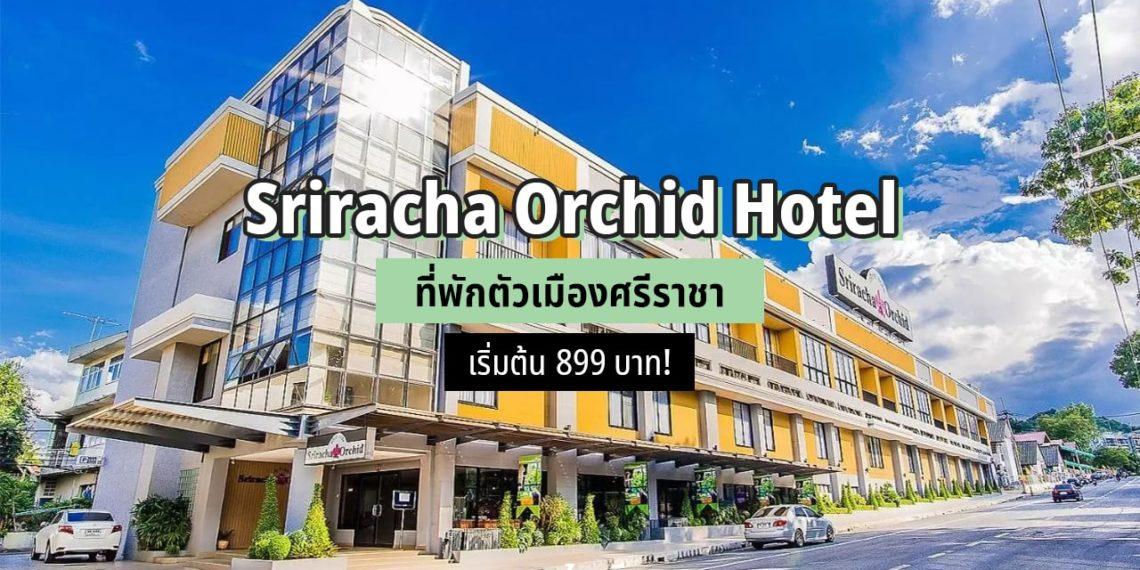 Sriracha Orchid Hotel ที่พักตัวเมืองศรีราชา เริ่มต้นคืนละ 899 บาท!