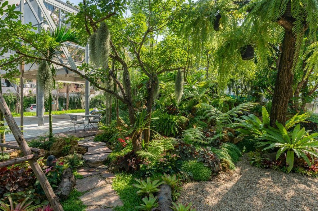 รีวิว!! 9 ที่พักสุดร่มรื่นในกรุงเทพ ธรรมชาติเหมือนมีป่ากลางกรุง!